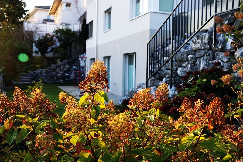 Herbsträumarbeiten Garten