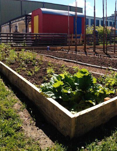 Gartenbau Wetzikon Bio Terra