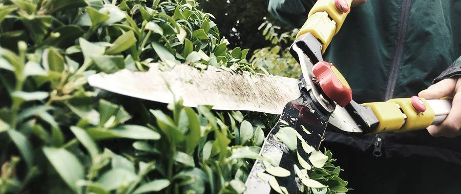 Gartenumbau Gartenplanung Gartenbau Wetzikon